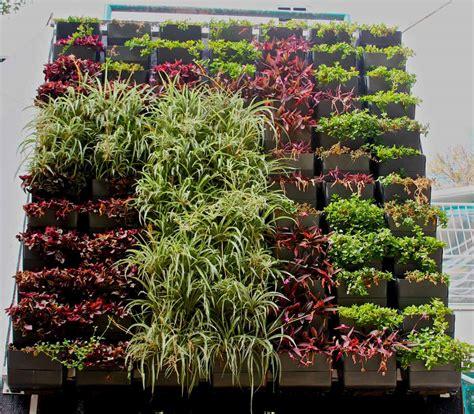 Jardín Vertical Muro Verde Huerto Urbano Diseño Jardines ...