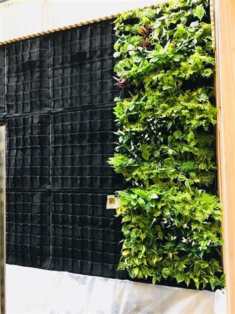 Jardín Vertical Muro Verde Natural 20 Piezas Geotextil ...