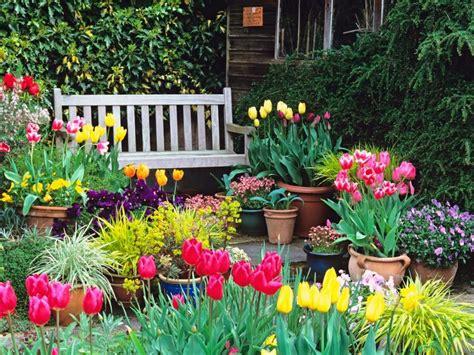 Jardineria: 5 flores de primavera bellísimas