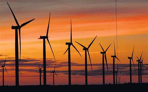 JOAMMA DINIZ:  Energia eólica  é alvo de ambientalistas no ...