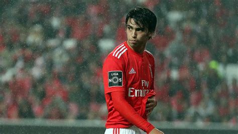 João Félix voted Liga NOS Best Player of January   SL Benfica