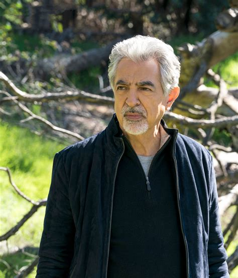 Joe Mantegna heads for finish line with  Criminal Minds