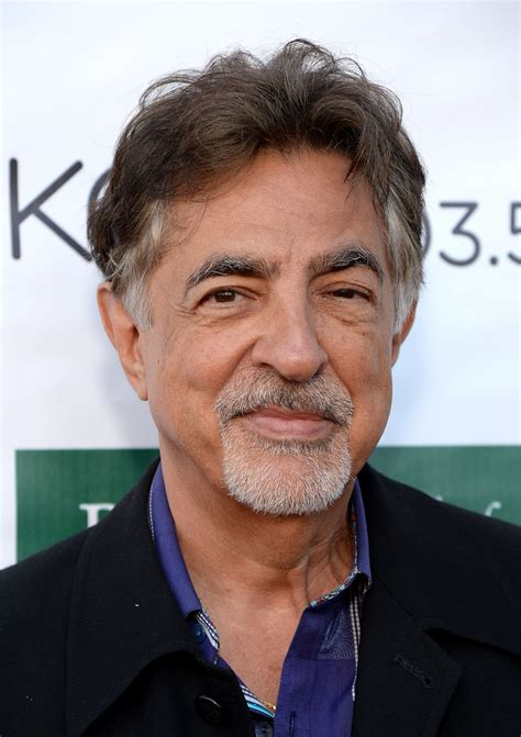 Joe Mantegna   Joe Mantegna Photos   Festival of Arts ...
