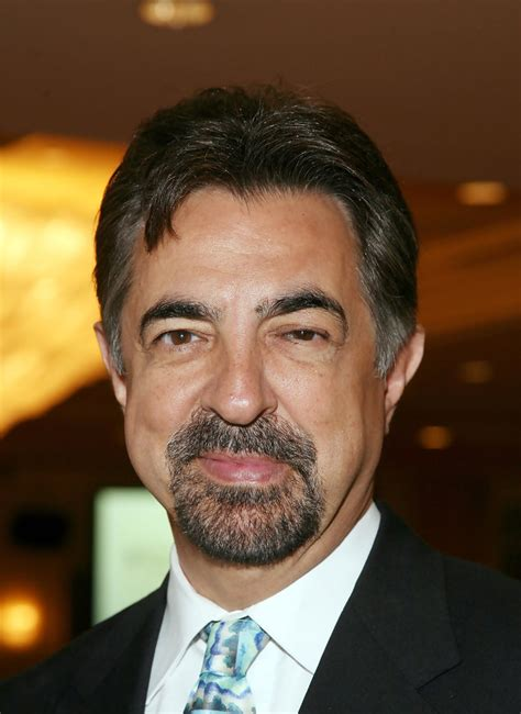 Joe Mantegna   Joe Mantegna Photos   Joe Mantegna ...