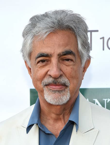 Joe Mantegna Photos Photos   Festival of Arts Celebrity ...