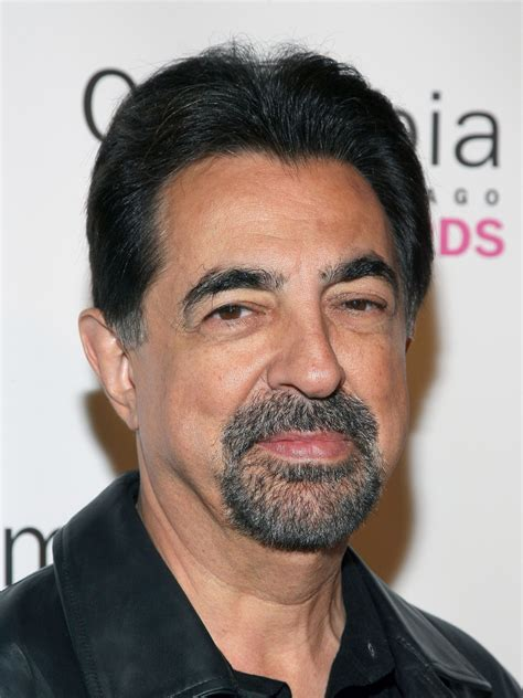 Joe Mantegna Photos | Tv Series Posters and Cast