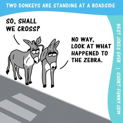 Jokes Top 100   Short funny.com   Our funniest Jokes