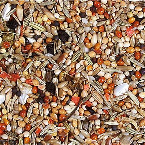 JR Farm Individual comida para ninfas más económica en zooplus