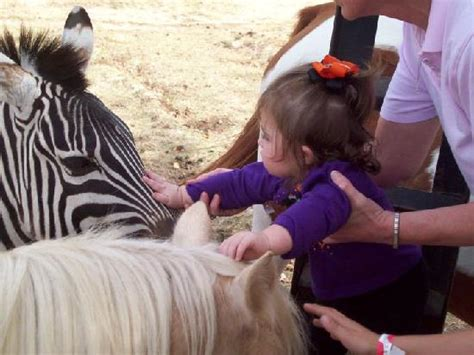 Jubilee Zoo  Shreveport    2019 All You Need to Know ...