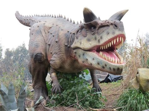 Jurassic Kingdom is now open just a short drive from ...