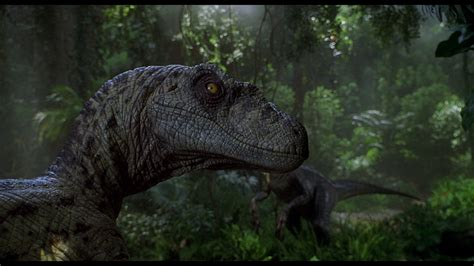 Jurassic Park Background  68+ images