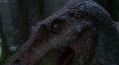 Jurassic Park GIF   Find & Share on GIPHY