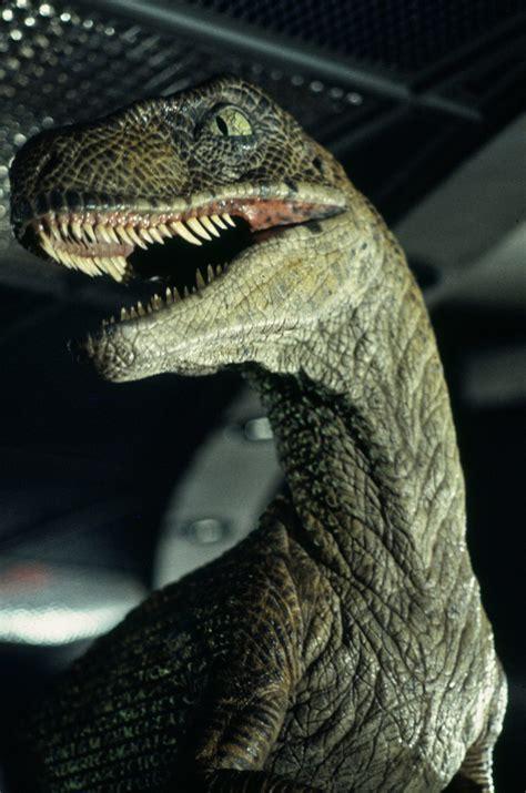 Jurassic Park Raptor Closeup – Jurassic Pedia