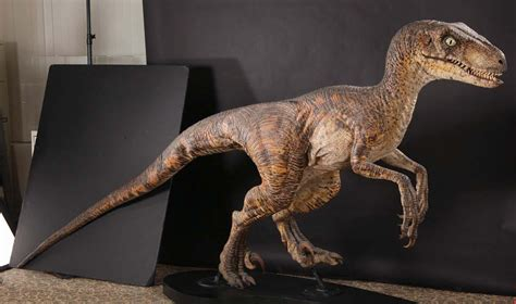jurassic park raptor   Google Search   Raptor suit ...
