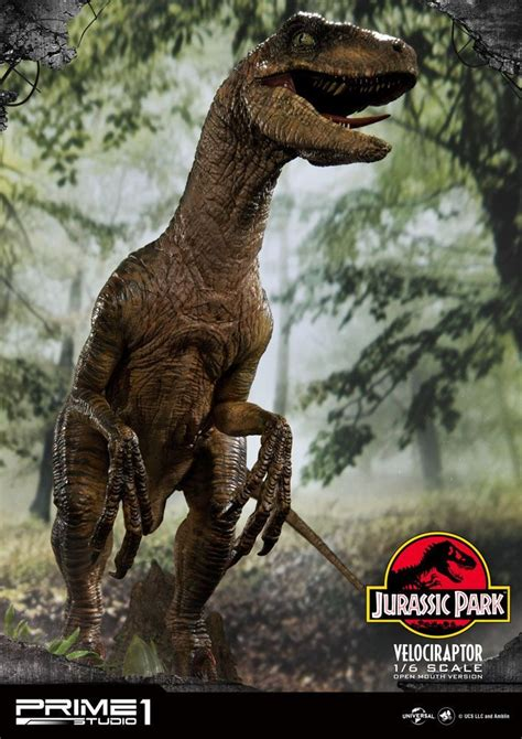 Jurassic Park   Velociraptor   Prime 1 Studio 1/6 Scale ...