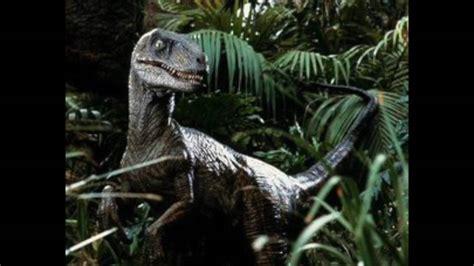 Jurassic Park Velociraptor Sound Effects   YouTube