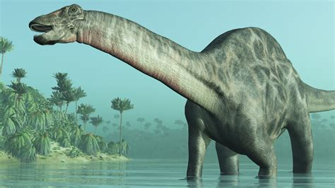 Jurassic Period Facts | Dinosaurs | Reptiles | Animals ...