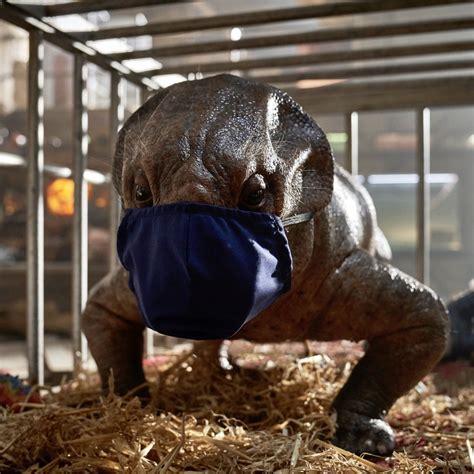 Jurassic World: Dominion  pone en pausa su rodaje por ...