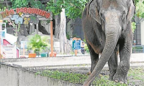 Justiça suspende concessão do Zoo para o Grupo Cataratas ...