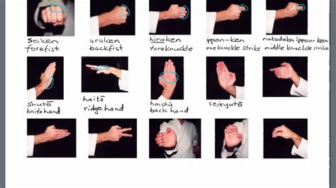 Karate Terminology: Hand Positions   YouTube