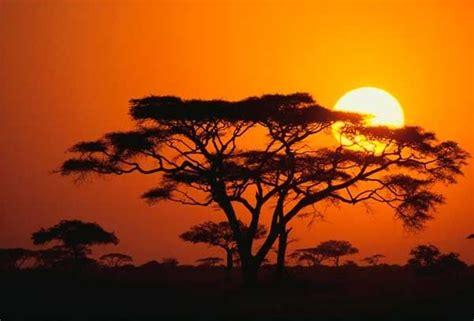 Kenia África | Fotos del amanecer, Pinturas, Paisajes