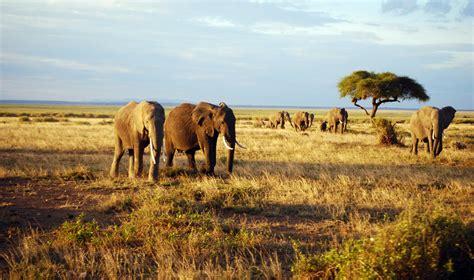 Kenia   Mundoexplora