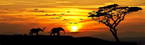 Kenia single   Viajar Solo