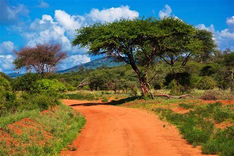 Kenia   wakacje Last Minute, Wycieczki do Kenii 2021 » Fly.pl