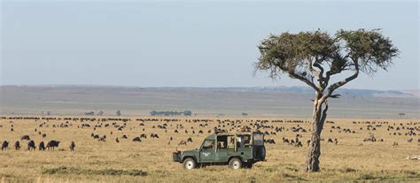 Kenya Country Information – All about Kenya
