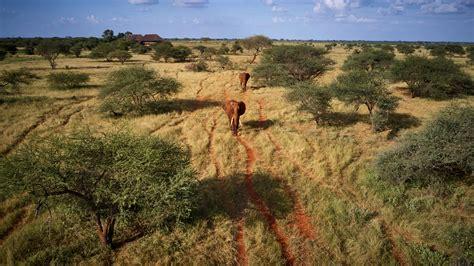 Kenya: riapertura delle frontiere al turismo dall 1 Agosto ...