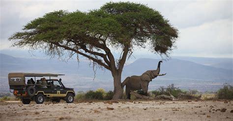 Kenya Safari Camps   African Safaris   Natural Habitat ...
