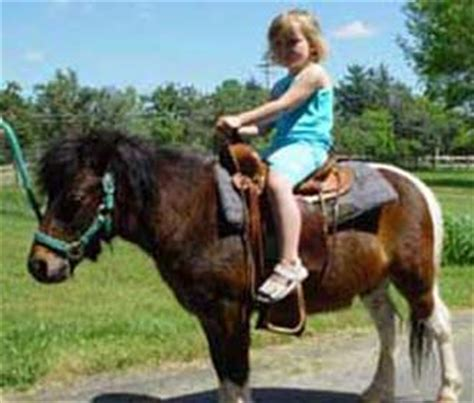 Kids Party Pony Rental and Children s Petting Zoo Parties!