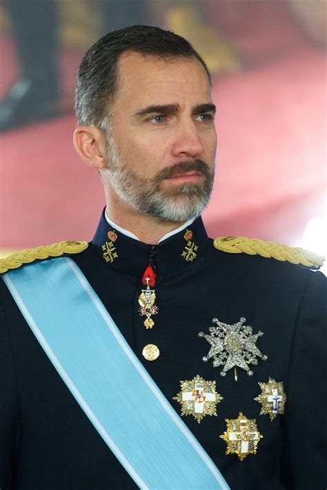 King Felipe VI Receives New Ambassadors   Zimbio