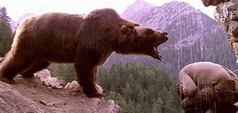 Kiwi, protagonista del filme  El oso , será trasladado a ...