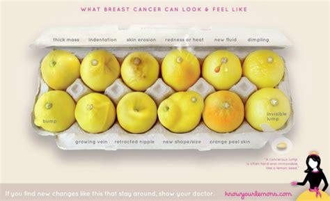 #KnowYourLemons: Una foto y 12 limones para aprender a ...