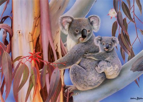 Koalas by Andrew Patsalou on DeviantArt