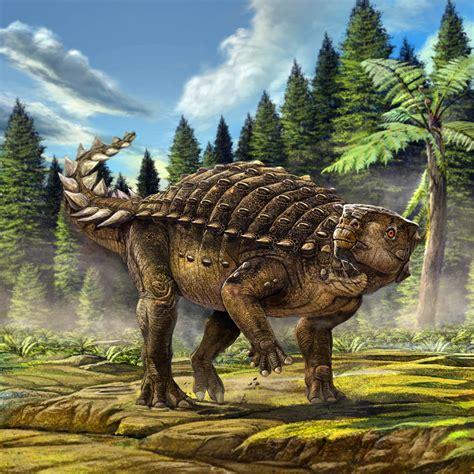 Kunbarrasaurus ieversi: New Armored Dinosaur Species ...