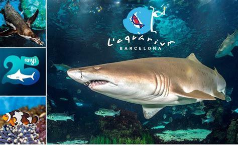 L Aquàrium de Barcelona cumple 25 años y quiere celebrarlo ...