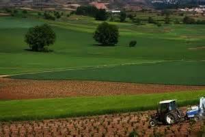 La agricultura absorbe el 30% de emisiones de CO2 | La Rioja