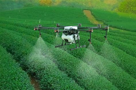 La agricultura de precisión se expande en Panamá y los ...