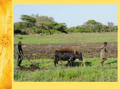 La agricultura de subsistencia 3º de eso