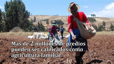 La Agricultura Familiar en el Perú   Importancia económica ...