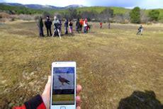 La app de referencia sobre las aves de España, ya ...