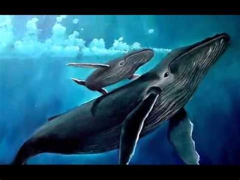 la ballena azul Video1.mov   YouTube