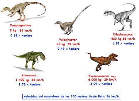La Biografía de la Vida 41. Grandes dinosaurios | El Cedazo