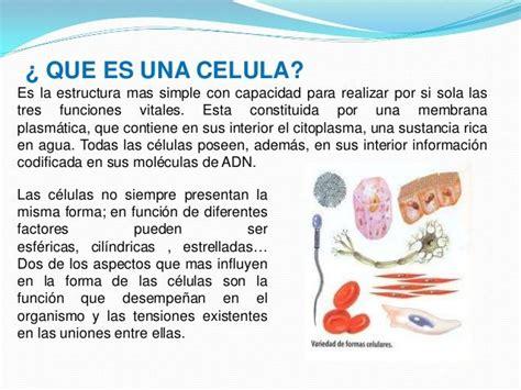 La celula y sus generalidades   Biología   Pinterest ...