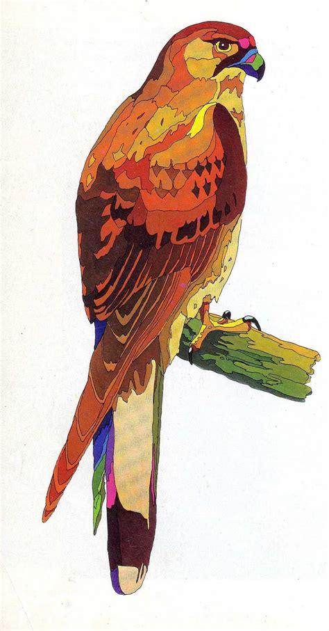 La Ciudad Silvestre: Aves rapaces