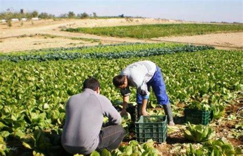 La Comunidad destinará 14 millones a la agricultura ...