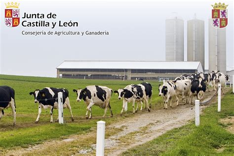 La Consejería de Agricultura, Ganadería y Desarrollo Rural ...