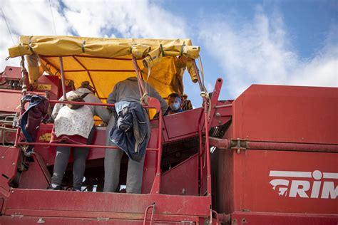 La Consejería de Agricultura y la Cooperativa Rioja Alta ...